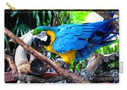 Parrot Greeting Card Carry-all Pouch