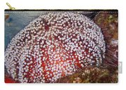 Red Sea Fire Urchin Carry-all Pouch