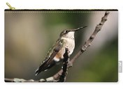 Ruby-throated Hummingbird  Carry-all Pouch