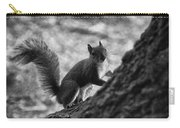 Squirrel In The Park V4 Carry-all Pouch