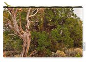 Weathered Tree Sunrise Canyon Dechelly Carry-all Pouch