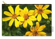 Yellow Texas Wildflowers Carry-all Pouch