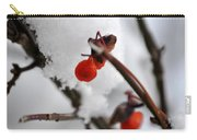 001 Frozen Berries Carry-all Pouch