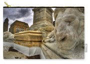 0016 Lions At The Square Carry-all Pouch
