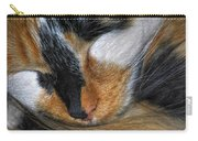 0053 Sleeping Cleo Carry-all Pouch