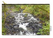 0106 Columbia River Gorge Near Bridal Veil Falls Carry-all Pouch