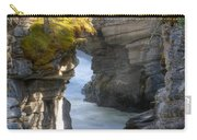 0191 Athabasca Canyon 2 Carry-all Pouch