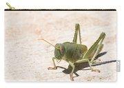 03 Egyptian Locust Grasshopper Carry-all Pouch