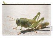 05 Egyptian Locust Grasshopper Carry-all Pouch