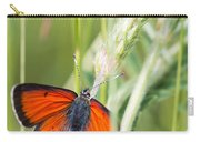 07 Balkan Copper Butterfly Carry-all Pouch