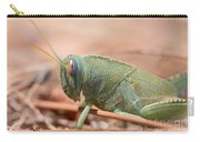 08 Egyptian Locust Grasshopper Carry-all Pouch