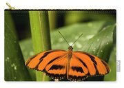 A Banded Orange Heliconian Butterfly Carry-all Pouch