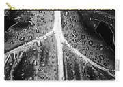 After The Rain - Bw Carry-all Pouch