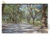 Lowcountry Allee Of Oaks Carry-all Pouch