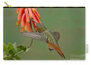 Allens Hummingbird Feeding Carry-all Pouch