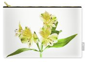 Alstroemeria Flowers Against White Carry-all Pouch