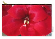 Amaryllis Named Black Pearl Carry-all Pouch