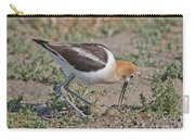 American Avocet And Eggs Carry-all Pouch