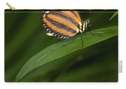 An Isabella Butterfly Eueides Isabella Carry-all Pouch