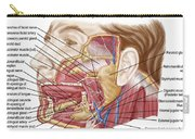 Anatomy Of Human Salivary Glands Carry-all Pouch