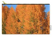 Dm5532-aspens In Fall Carry-all Pouch