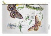 Australian Butterflies Carry-all Pouch