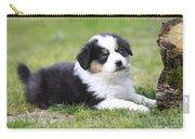 Australian Shepherd Puppy Carry-all Pouch
