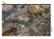 Autumn Creek Carry-all Pouch