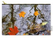 Autumn Carry-all Pouch by Daniel Janda