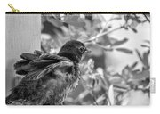 Baby Robin - Revving Up  Carry-all Pouch