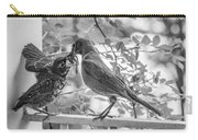 Baby Robin - Yummy Carry-all Pouch