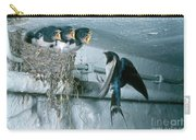 Barn Swallows Carry-all Pouch
