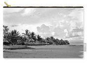 Beach Of The Iguana Bw Carry-all Pouch