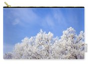 Beautiful Winter Landscape Carry-all Pouch