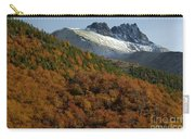 Beech Forest, Chile Carry-all Pouch