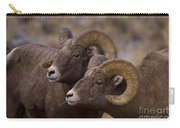 Big Horn Rams   #4664 Carry-all Pouch