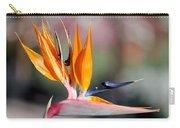 Bird Of Paradise  Carry-all Pouch by Gunter Nezhoda