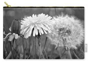 Birth Life Death Carry-all Pouch by Frozen in Time Fine Art Photography