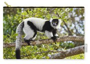Black And White Ruffed Lemur Madagascar Carry-all Pouch