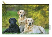 Black And Yellow Labrador Retrievers Carry-all Pouch