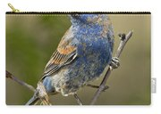 Blue Grosbeak Carry-all Pouch