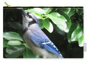 Blue Jay 1 Carry-all Pouch