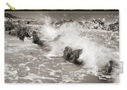 Bolonia Waves Carry-all Pouch