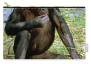 Bonobo Carry-all Pouch