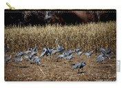 Bosque Del Apache New Mexico-sand Cranes V3 Carry-all Pouch
