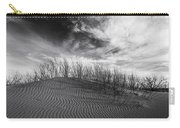Bruneau Dunes State Park Idaho Carry-all Pouch