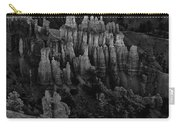 Bryce Canyon 9 Carry-all Pouch