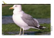 California Gull Carry-all Pouch