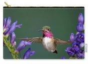 Calliope Hummingbird Stellula Calliope Carry-all Pouch