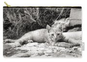 Cat And Lavender  Carry-all Pouch